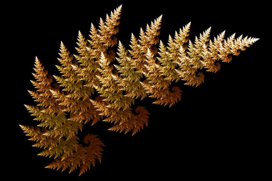 Image result for fractals