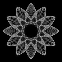 Fractal: Epitrochoid Rose Orbit Trap